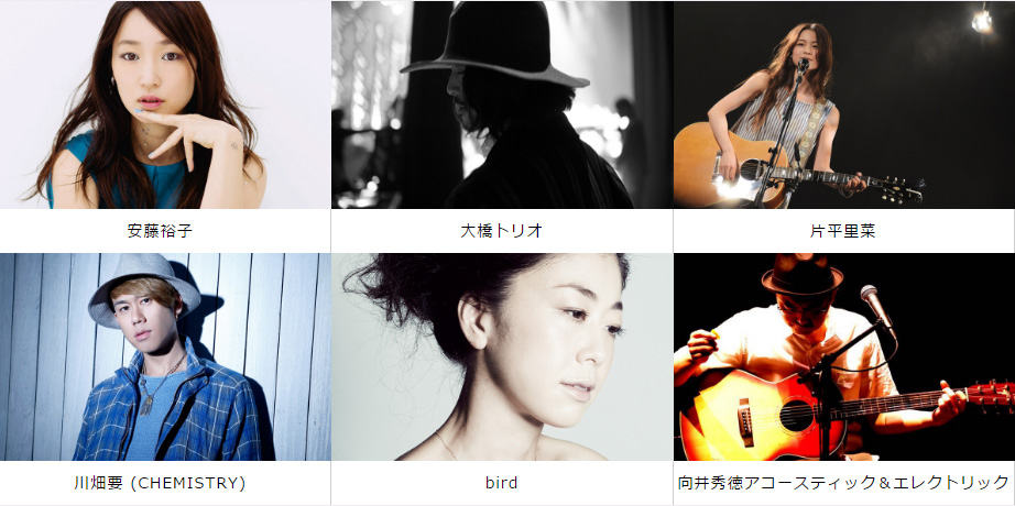 ando-bird