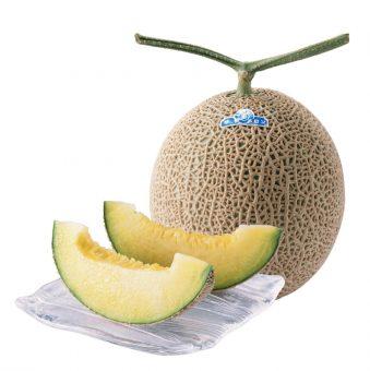 melon_04-1298x1300
